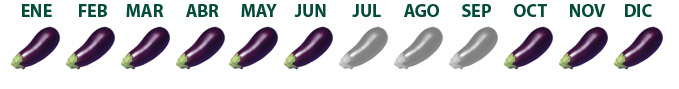 calendario berenjenas_esp