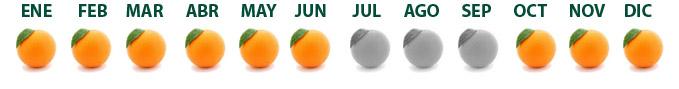 calendario naranjas_esp