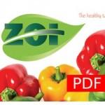 presentacion_pdf_imagen