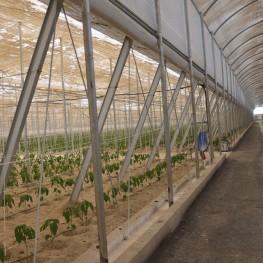 05_instalaciones agricolasv2